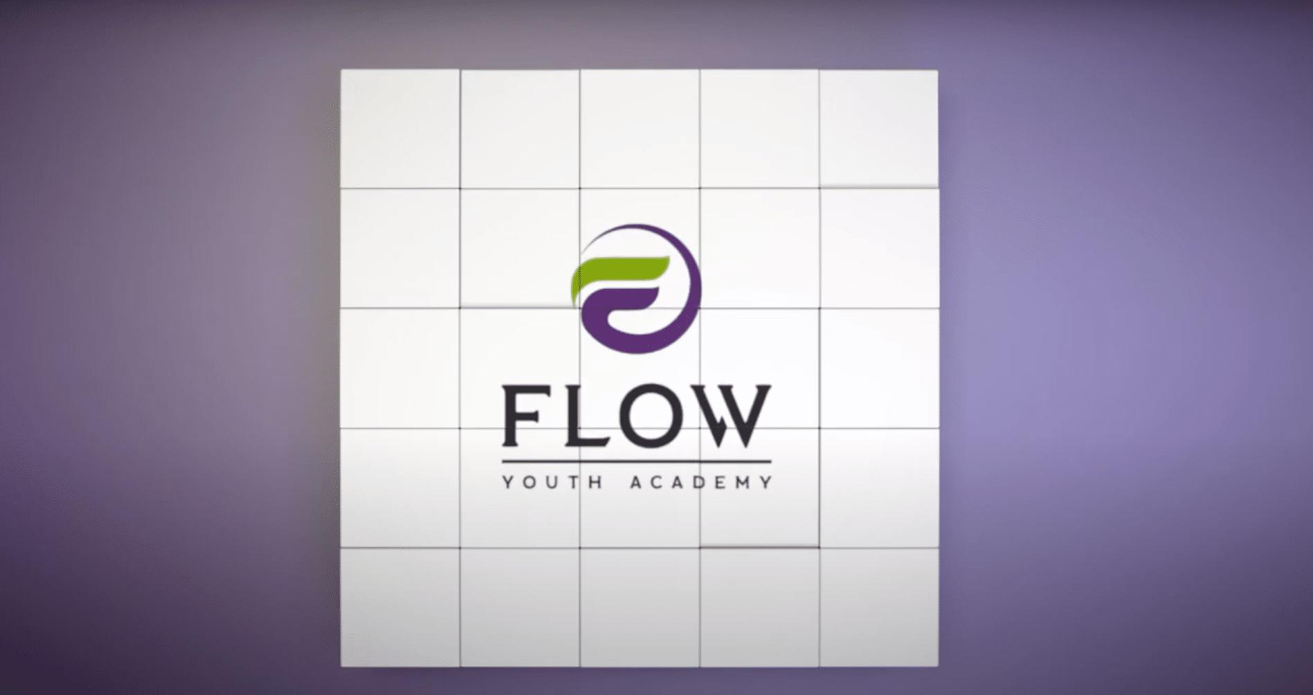 """Баннер с логотипом """"Flow Youth Academy"""" - детский школы TRIZ (ТРИЗ) для детей и подростков в Киеве."""